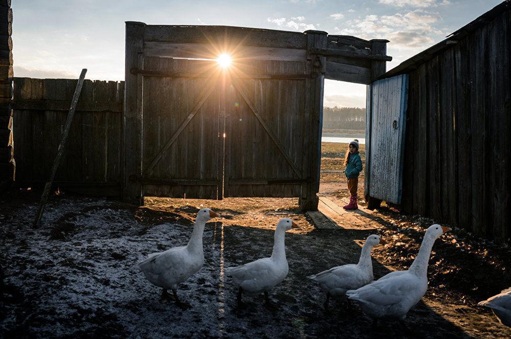 俄羅斯攝影師阿列克謝·馬利加夫科系列作品《上學的路》之一