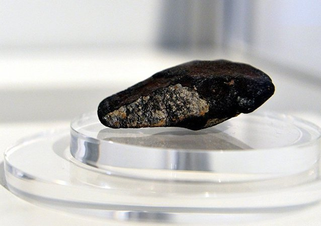香港佳士得公司成功拍卖三块锡霍特-阿林陨石碎片