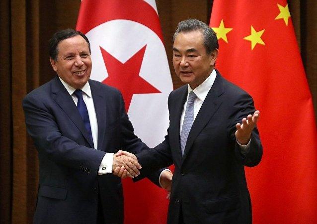 中国外长:中国与突尼斯务实合作有着良好发展前景