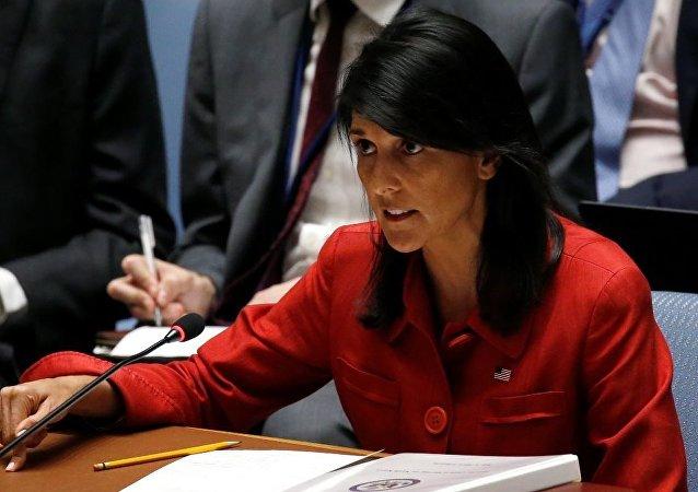 美国在安理会