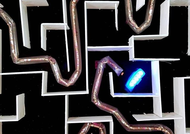 工程师造出用于救援行动的蛇形机器人
