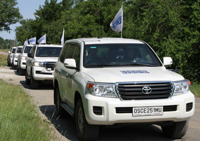 欧安组织驻乌特别监督团副主席:顿巴斯今年平民遇难人数已经增长50%以上