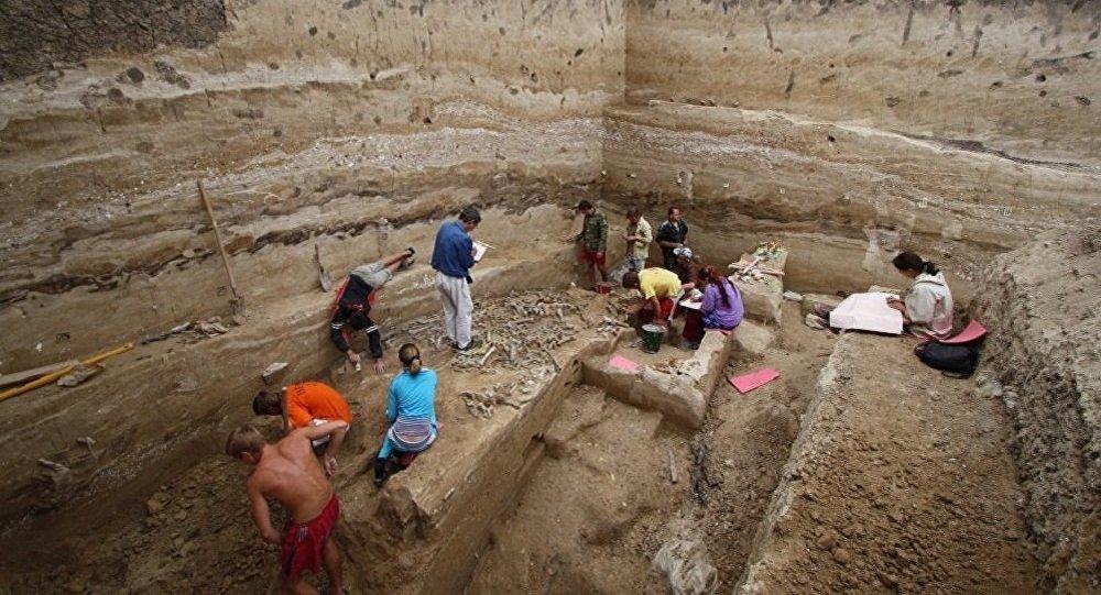 俄考古学家在西伯利亚发现了用于复杂手术的医疗器械