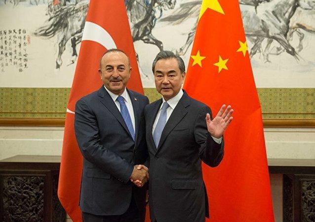 土耳其外长:土方绝不允许在土境内发生任何危害中国主权的活动
