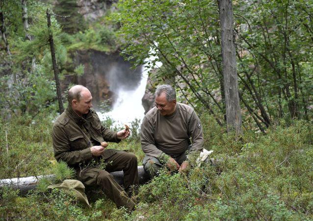 俄哈卡斯共和国领导人:普京在西伯利亚捕鱼时主要吃鱼汤和狗鱼饼