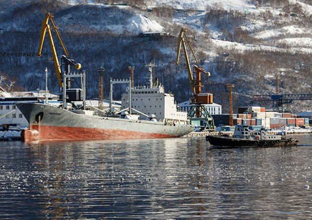 符拉迪沃斯托克自由港入驻企业即将启动首个通往亚太国家的集装箱航线