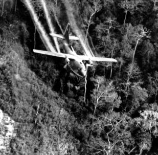 6名越南人在拆除越戰期間的美國炸彈時被炸死