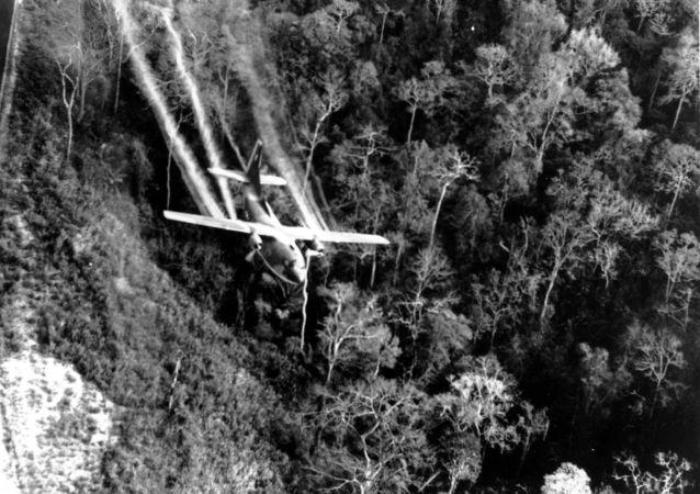 6名越南人在拆除越战期间的美国炸弹时被炸死