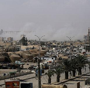 媒体:美国没有解放拉卡后在叙开展进一步行动的计划