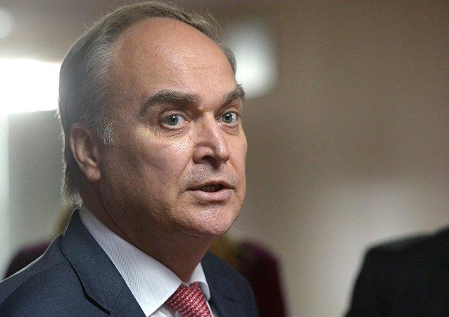 俄驻美大使:俄美元首如果会面或将讨论打击恐怖主义、叙局势和朝鲜问题