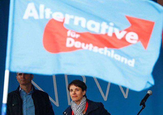 專家:德國選擇黨或在聯邦議院選舉中得到1成選票