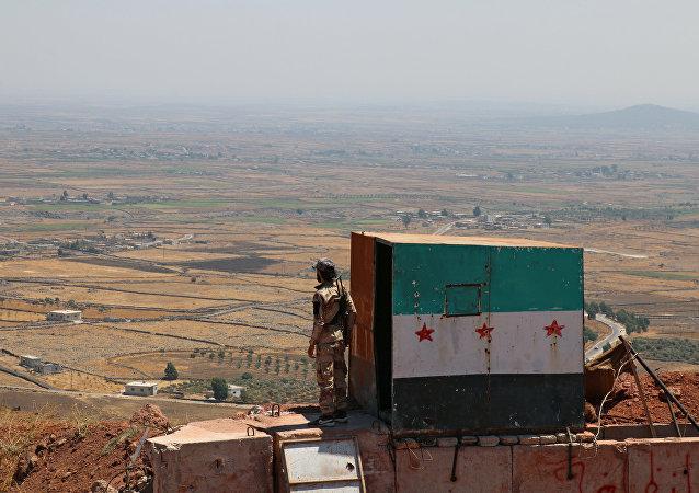 普京总统拟敦促金砖国家领导人参与调解叙利亚局势