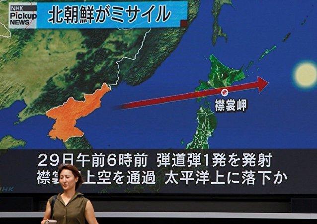 解决朝鲜问题需为平壤寻求合适的安全保证