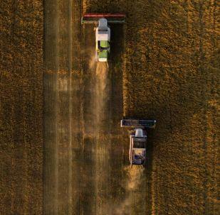 安倍:农业机器人可以全天候从事农业生产
