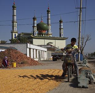 中国为降低噪音拆除清真寺高音喇叭