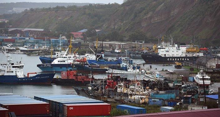 俄远东中国投资支持中心将简化中国商人工作