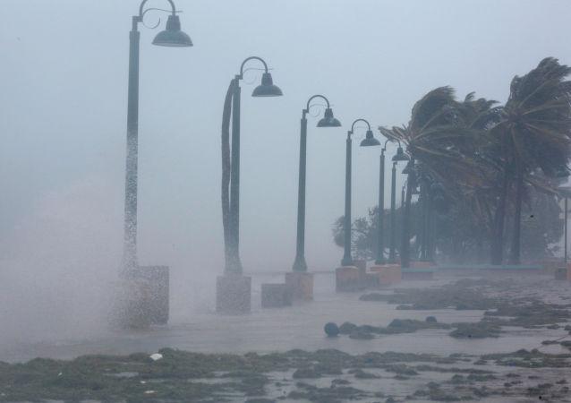 波多黎各飓风