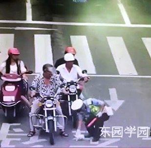 暖心!中国交警救小猫