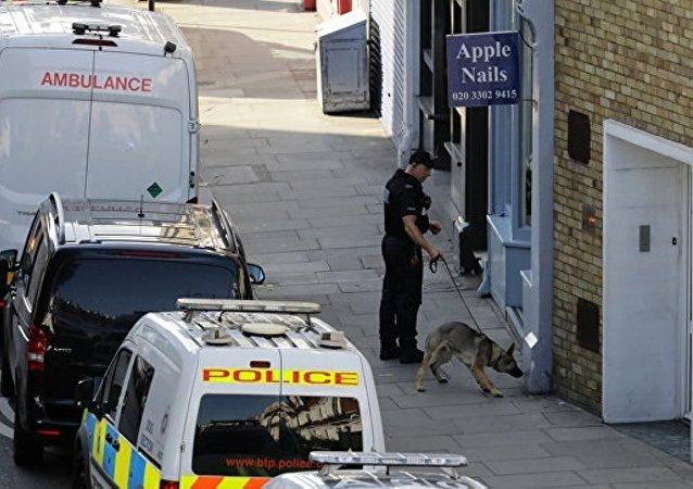 英国警方称伦敦地铁的爆炸由自制炸弹引起