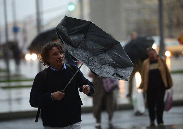 莫斯科飑风刮倒60多棵大树 损坏6个屋顶