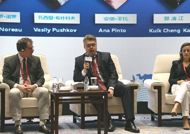 Руководитель центра международных проектов Информационного агентства и радио Sputnik   Василий Пушков
