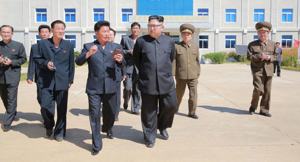 Лидер КНДР Ким Чен Ын во время посещения фруктового сада