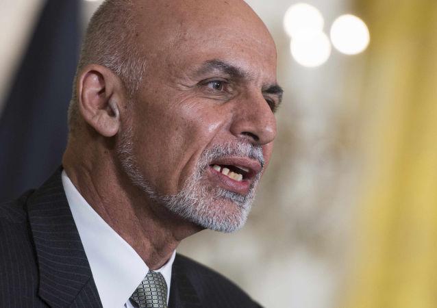 阿富汗总统加尼表示该国9个省份已被解放