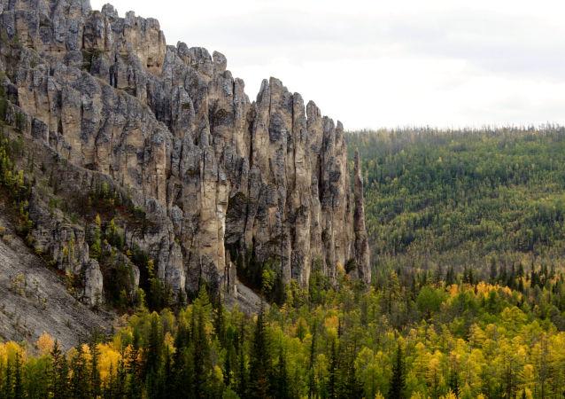 """俄滨海边疆区""""豹地""""国家公园扑灭野火"""