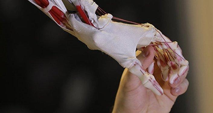 俄學者製造出一種可製造出耐磨的人體移植物的材料