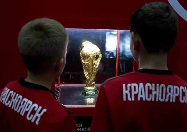 俄总统普京:尽量保障2018年世界杯廉价门票