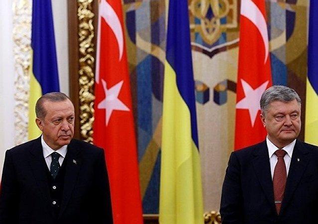 土耳其总统在与乌克兰总统召开联合新闻发布会时睡着