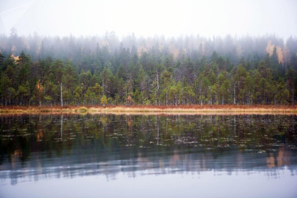 俄羅斯卡累利阿共和國蘇奧耶爾維區的托爾沃耶爾維湖