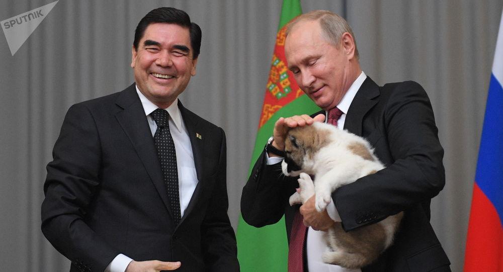 土庫曼斯坦總統送俄總統中亞牧羊犬幼崽作生日賀禮