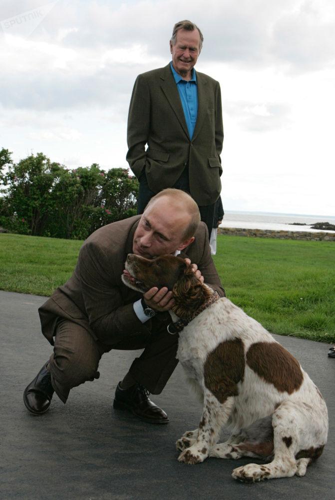俄罗斯总统弗拉基米尔•普京与美国前总统老布什在布什家族庄园举行会晤。