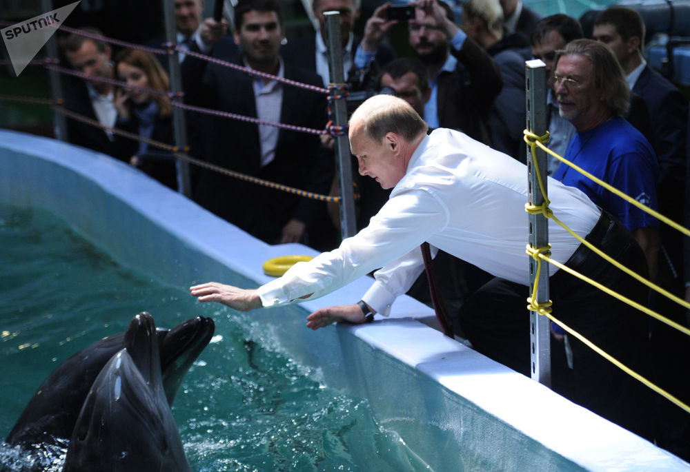 俄联邦总统普京来到滨海边疆区的海洋馆