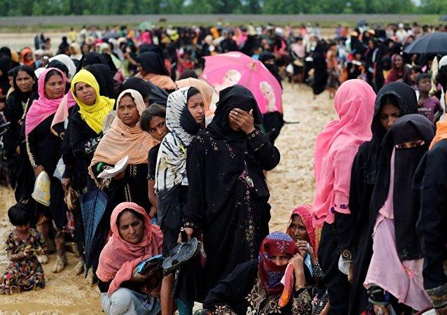 孟加拉国罗兴亚人难民营遭到大象袭击,造成4人死亡