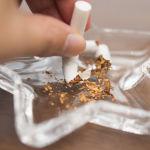 媒体:公寓单元门口禁烟项目获得俄卫生部支持