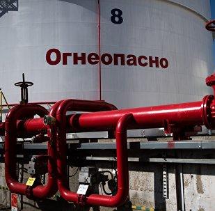普京称,美国国会通过新一轮制裁的目的是将俄罗斯挤出欧洲能源市场