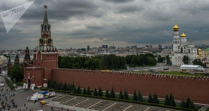 克宫:俄土总统对两国合作发展表示满