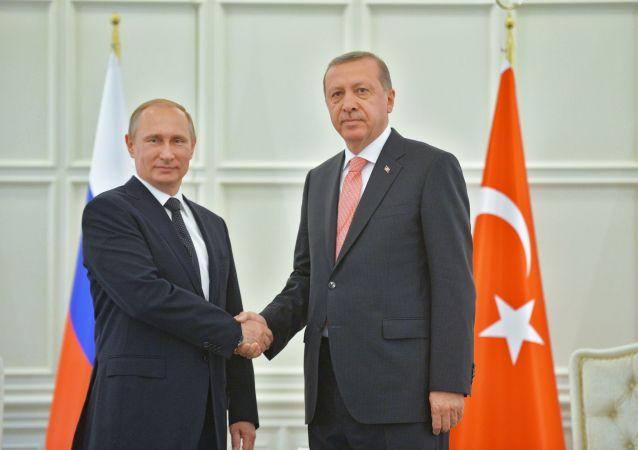 克宫:俄土总统将于11月13日在索契讨论叙利亚和解问题