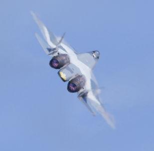 印度斯坦航空公司主张与俄国联合研发五代战机
