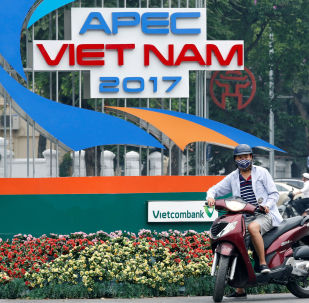 "APEC岘港会议未讨论""全面进展的跨太平洋伙伴关系协定"""
