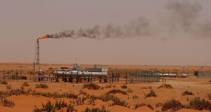 阿联酋能源部长希望2018年提出无限期石油减产协议