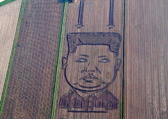 两百多米长的金正恩画出现在了意大利艺术家自家的地里
