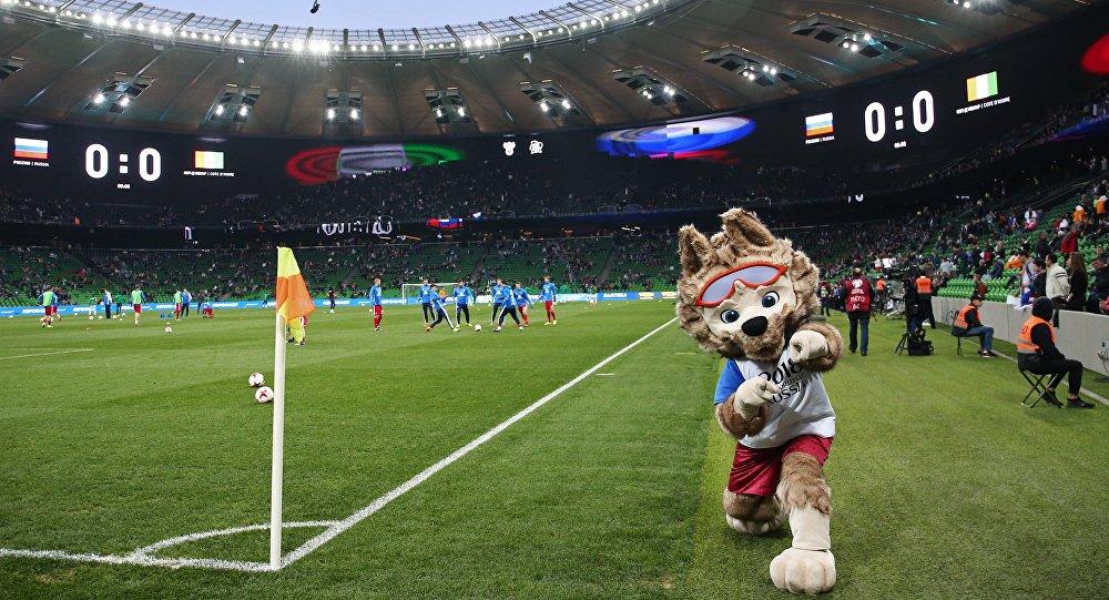 中国外交官高度评价俄方在世界杯期间为球迷提供的安保水平