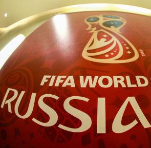 俄副總理:FIFA高度評價2018世界杯組委會籌備工作