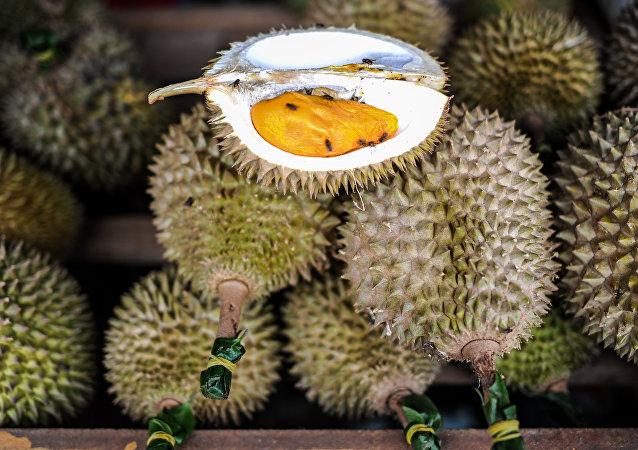 專家:「榴蓮外交」把馬來西亞和中國聯繫起來