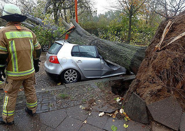欧洲Gervart飓风死亡人数增至6人