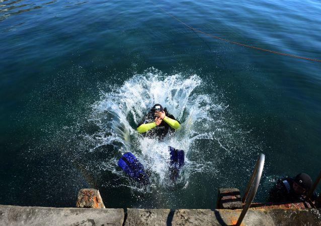 媒体:潜水员将二战期间在东南亚海岸附近沉没的约40艘船只拆卸成废铁