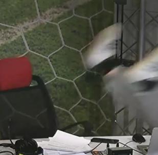 知名俄罗斯体育评论员在直播时 从椅子上掉下来(视频)